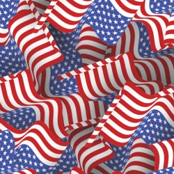 1633 American Flags