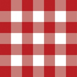 1627 Red Gingham