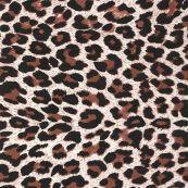 620 Leopardo