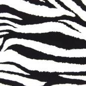622 Cebra